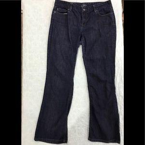 Ann Taylor LOFT sz 12 curvy boot jeans